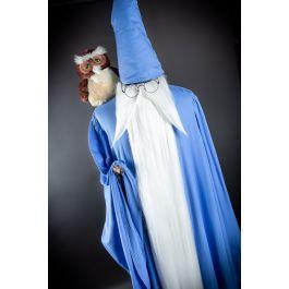Disney Halloween Cosplay The Sword in The Stone Costume Disney Villain Costume Mad Madam Mim Disney Dresses Wizard of Merlin Costume
