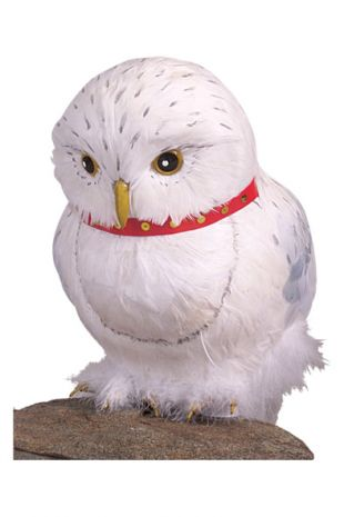 Harry Potter Hedwig the Owl - Kids Childrens Costumes - Little Shop of Horrors Costumery - Mornington Peninsula Frankston