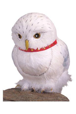 Harry Potter Hedwig the Owl - Kids Childrens Costumes - Little Shop of Horrors Costumery - Mornington Peninsula Frankston
