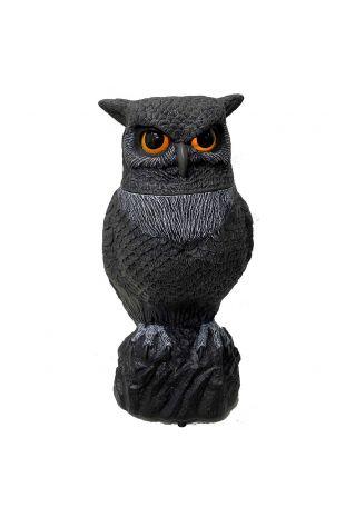 Animatronic Raven Crow Halloween Decor at Little Shop of Horrors Costumery Mornington Frankston Melbourne Australia