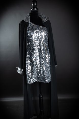 Diana Ross - 1970s Disco Studio 54 Costume - Little Shop of Horrors Costumery - Costume Hire Shop - Mornington Frankston