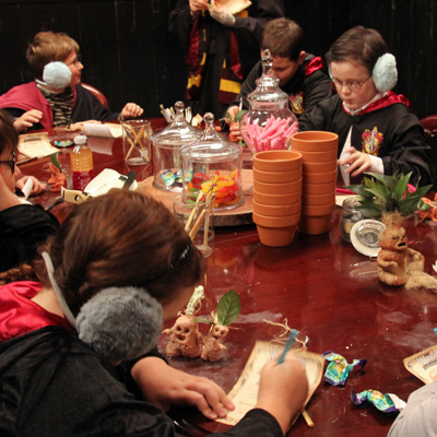 Harry Potter Birthday Parties at Little Shop of Horrors Costumery Melbourne Mornington