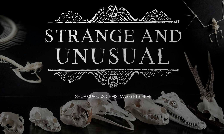 Strange & Unusual Christmas Gifts